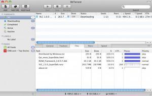 Enlarge BitTorrent Screenshot
