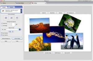 1. Windows Photo Gallery
