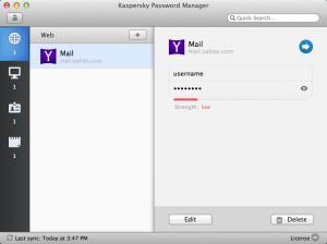 Enlarge Kaspersky Password Manager Screenshot