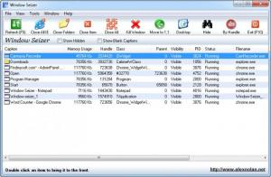 Enlarge Window Seizer Screenshot