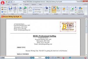 Enlarge Magic PDF Editor Screenshot
