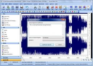 Enlarge Sound Editor Pro Screenshot