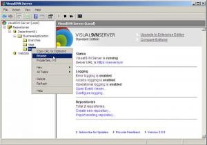 Enlarge VisualSVN Server Screenshot