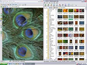 Enlarge Ai Picture Explorer Screenshot