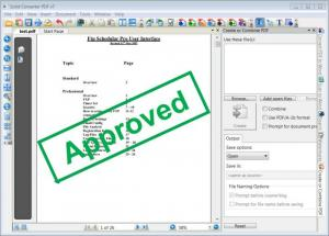 Enlarge Solid Converter PDF Screenshot