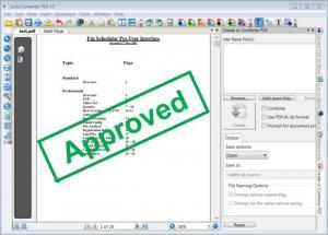 Enlarge Solid Converter PDF Screenshot