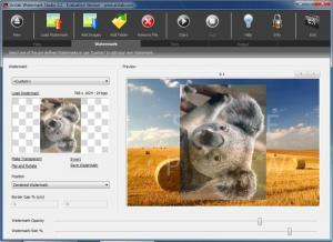 Enlarge Watermark Studio Screenshot