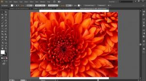 Download Adobe Illustrator Free