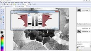 Enlarge Pinta Screenshot