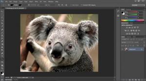 Enlarge Adobe PhotoShop Screenshot