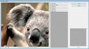 Enlarge Adobe PhotoShop Screenshot