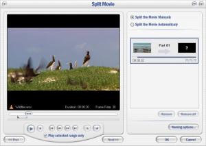 Enlarge Video Watermark Factory Screenshot