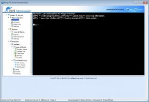 Enlarge Wing FTP Server Screenshot