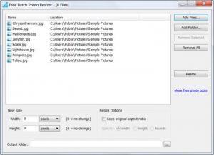 Enlarge Free Batch Photo Resizer Screenshot