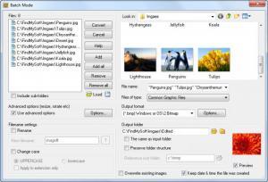 Enlarge Ivan Image Converter Screenshot