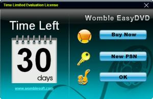 Enlarge Womble EasyDVD Screenshot