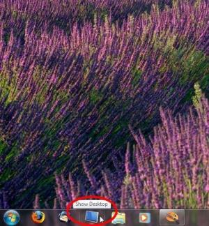 Enlarge Show Desktop Screenshot
