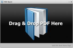 Enlarge PDF Burst Screenshot