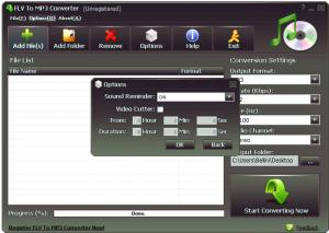 Enlarge FLV To MP3 Converter Screenshot