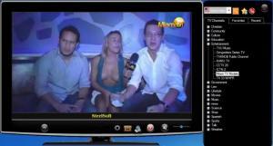 Enlarge SteelSoft TV Screenshot