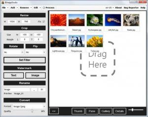 Enlarge BImageStudio Screenshot