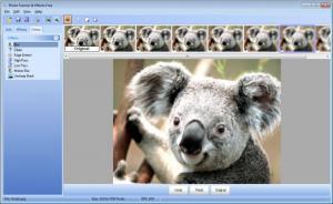 Enlarge Photo Frames & Effects Free Screenshot