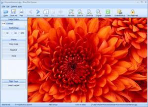 Enlarge Free File Opener Screenshot