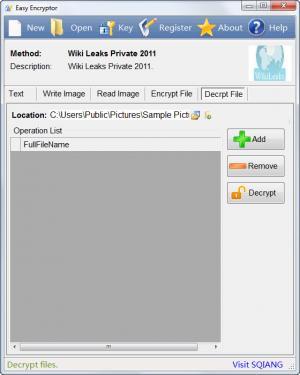 Enlarge Easy Encryptor Screenshot