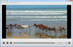 Enlarge Free Video Player Screenshot