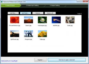 Enlarge Mytoolsoft Watermark Software Screenshot