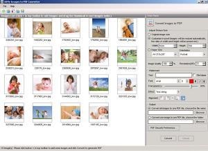 Enlarge 5DFly Images to PDF Screenshot