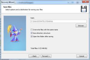 Enlarge Hetman File Repair Screenshot