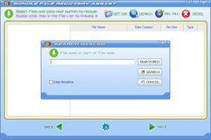 Enlarge File Recovery Assist Screenshot