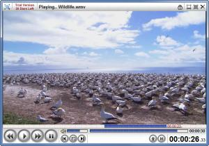 Enlarge Hypercube Media Player Screenshot