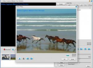 Enlarge Video Capture Master Screenshot