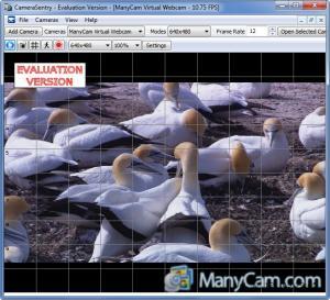 Enlarge CameraSentry Screenshot