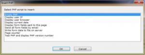 Enlarge Raptor Web Designer Screenshot