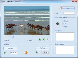 Enlarge Format Factory Screenshot