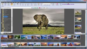 Enlarge GiSeek Screenshot