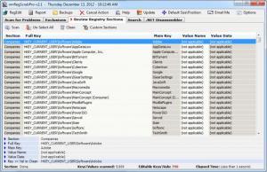 Enlarge nmRegScrubPro Screenshot
