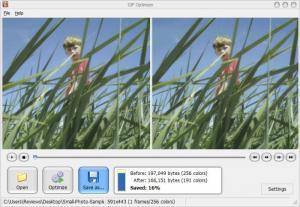 Enlarge GIF Optimizer Screenshot