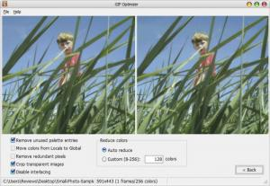 Enlarge GIF Optimizer Screenshot