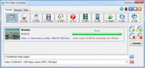 Enlarge FSS Video Converter Screenshot