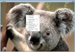 Enlarge Image Viewer Enhanced Screenshot