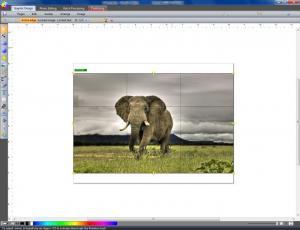 Enlarge Labography Screenshot