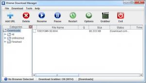 Enlarge Xtreme Download Manager Screenshot