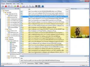 Enlarge WebPictureDownloader Screenshot