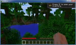 Enlarge Minecraft Screenshot