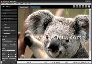 Enlarge Kestrel GX Screenshot
