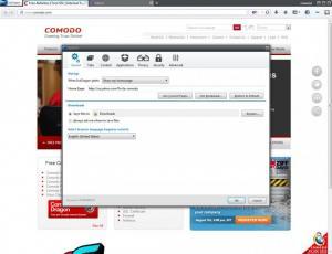 Enlarge Comodo IceDragon Screenshot